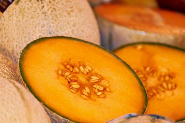 melon