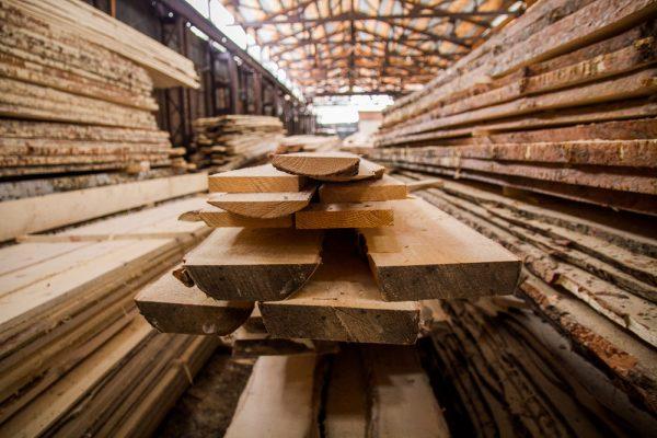 В шести районах Новосибирской области созданы новые лесоперерабатывающие мощности