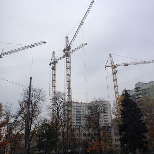 Новосибирская область поучит более 200 га федеральных земель