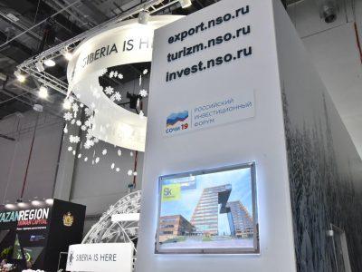 АИР Новосибирской области представил два проекта в рамках кейс-зоны РИФ