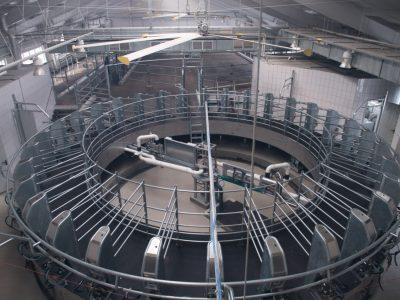 Научно-производственный кластер будет создан на базе ГП «Толмачевское»