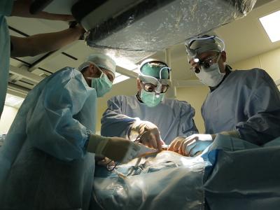 Сибирские ученые разработали биопротез клапана для детских кардиохирургии