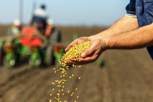 При поддержке Россельхозбанка аграрии Новосибирской области готовы приступить к посевной