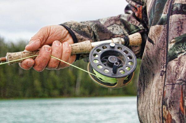 В Новосибирской области введено ограничение на вылов рыбы
