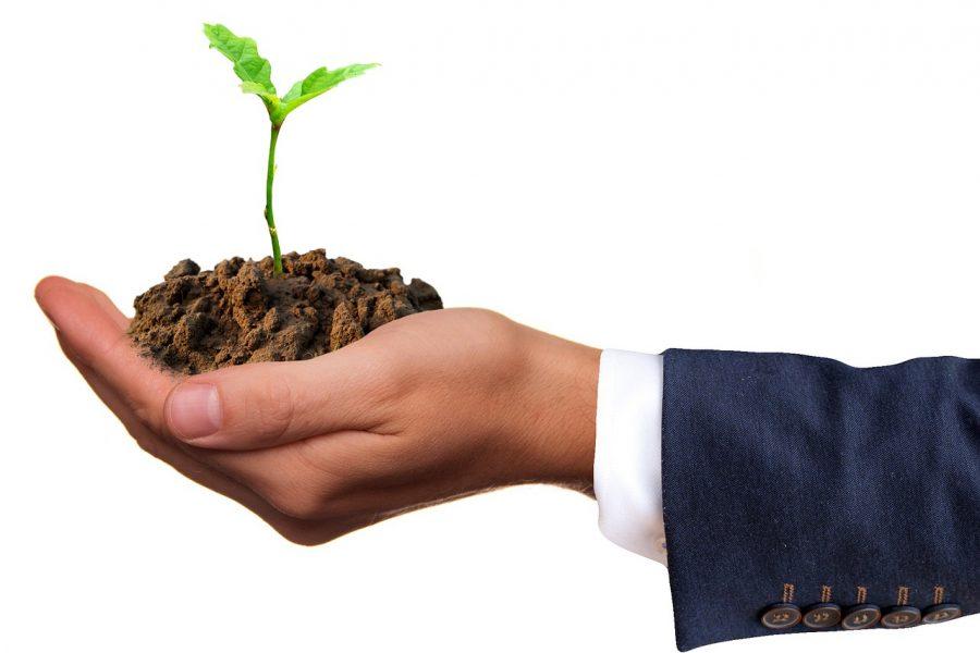 АНО ресурсный центр «Инновационные решения» запускает акселератор