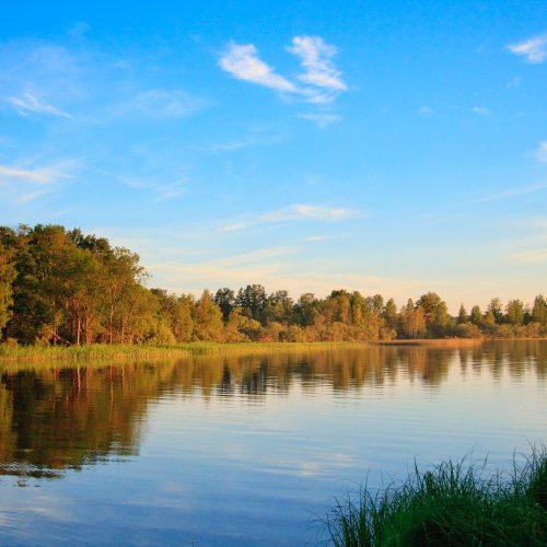 Водные биологические ресурсы передали минсельхозу