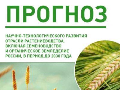 В НГАУ разработали Прогноз научно-технологического развития отрасли растениеводства