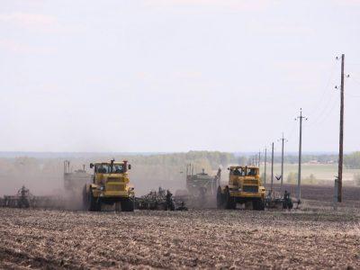 В Новосибирской области засеяно более половины планируемых площадей