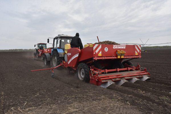 Ордынское предприятие готово стать поставщиком сырья для завода по производству снеков