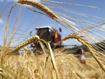 Инвестируем в сельское хозяйство