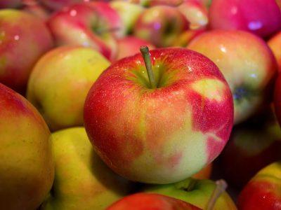 В Новосибирске уничтожили очередные 19 тонн санкционных яблок из Польши