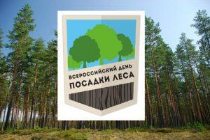 Всероссийский день посадки леса прошел в Новосибирске