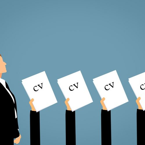 Зарплата HR-специалистов в Новосибирске за год снизилась на 13%