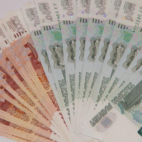 Новосибирские организации-банкроты перечислили в бюджет более 500 млн рублей