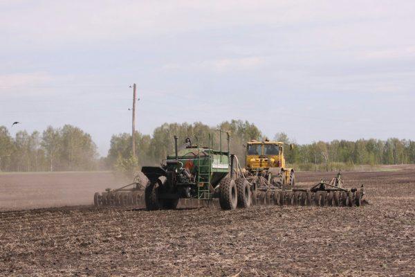 В Новосибирской области засеяли более 1,8 млн гектар яровых культур
