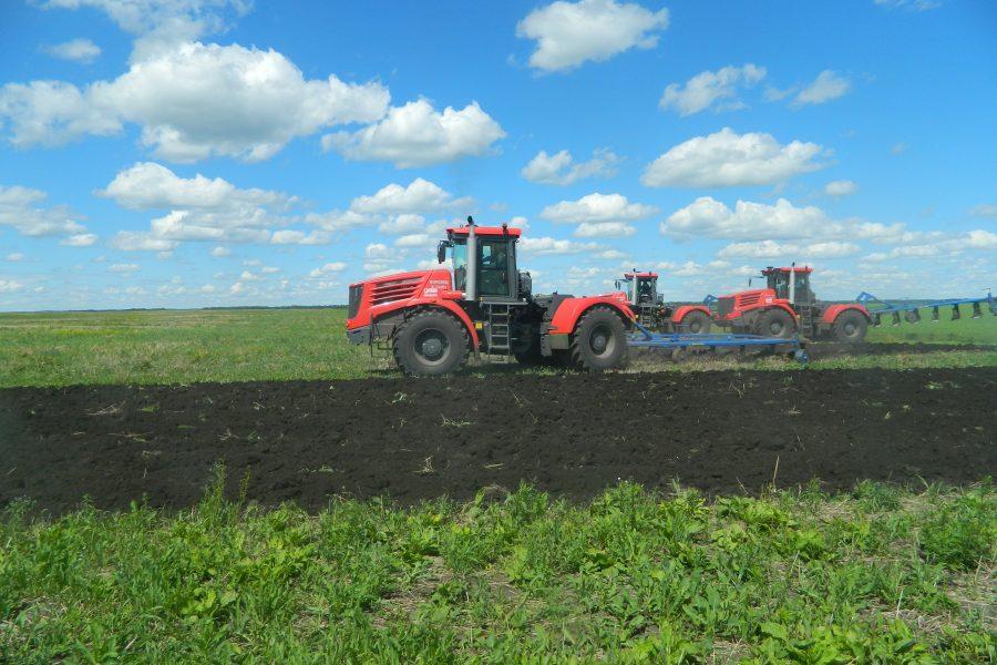Агросектор области будет развиваться по новому закону