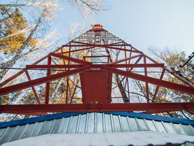 Сеть МегаФона в Новосибирске выросла на 89 базовых станций