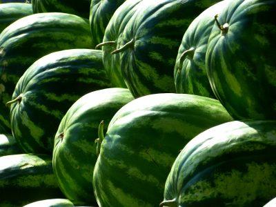 20 тонн арбузов из Казахстана не пустили в Новосибирскую область