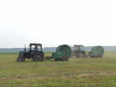 Аграрии Новосибирской области получили 1,8 млрд рублей господдержки