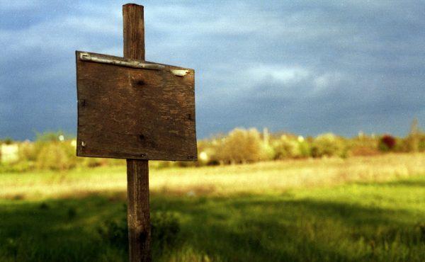 В Новосибирской области земельные участки дешевеют