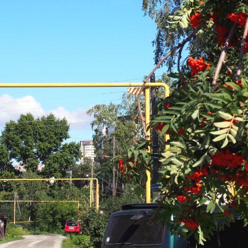 42 факта нелегального потребления газа выявлены в Новосибирской области