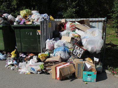 «Экология-Новосибирска» выставила более 1200 претензий