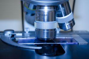 Новосибирские научные центры примут участие в создании геномных центров