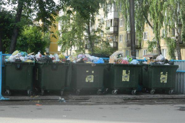 «Экология-Новосибирск» подала 33 иска в арбиртажный суд