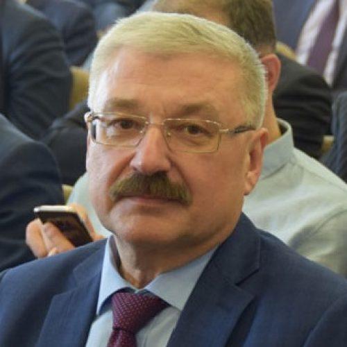 Главу Новосибирского района «отправили в отставку»