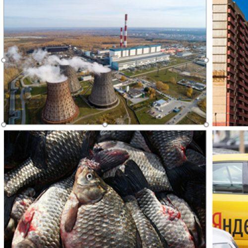 В правительстве региона разработали проект дорожной карты развития конкуренции в Новосибирской области