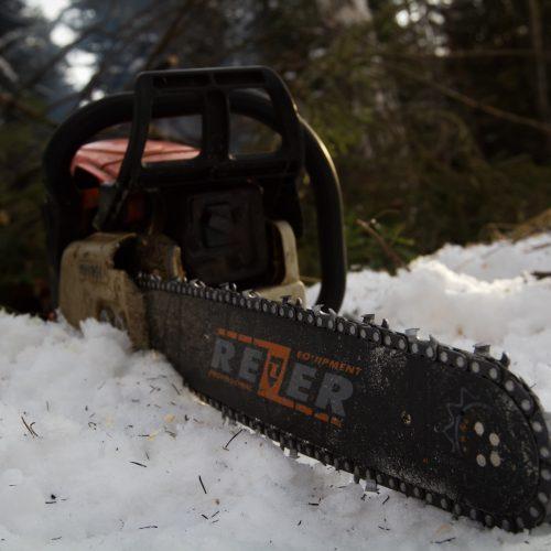 В Новосибирской области будет усилена борьба с теневым оборотом древесины