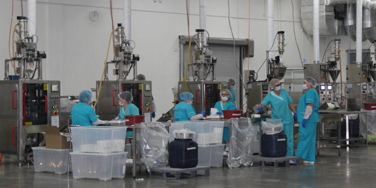 «НЛ Континент» инвестирует в качество и разработки