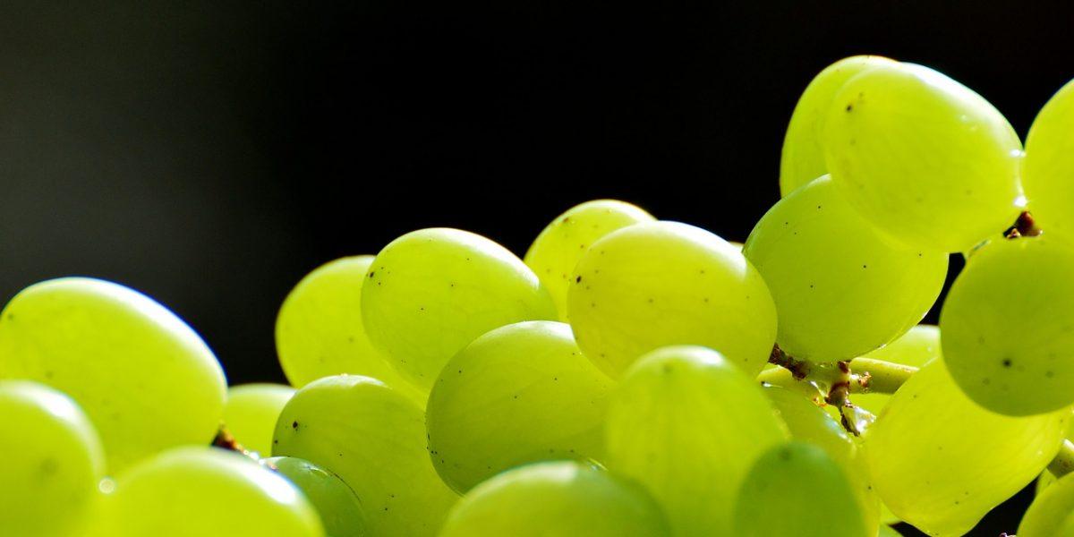 На территории Новосибирской области выявлено более 20 тонн зараженного винограда