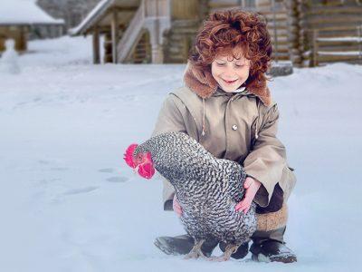 В Новосибирской области набирает популярность льготная сельская ипотека от Россельхозбанка