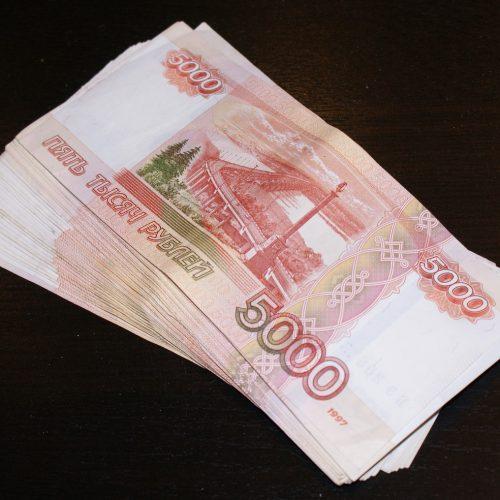 В Новосибирской области руководитель предприятий получил субсидию по подложным документам
