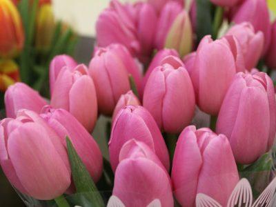 В Новосибирске на 8 марта были популярны крупные букеты с тюльпанами