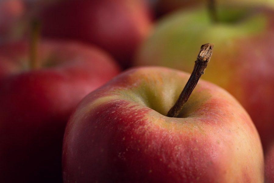За две недели августа в Новосибирскую область завезли почти 260 тонн яблок