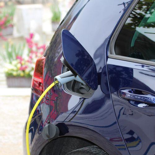 В Новосибирске в июле купили два электромобиля