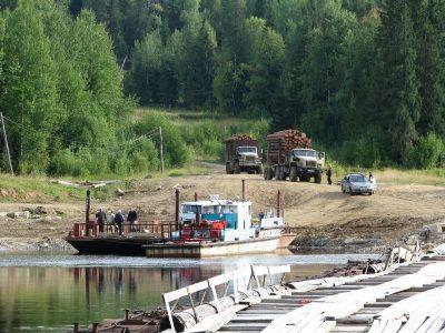 Объемы экспорта сибирского леса за рубеж сокращаются