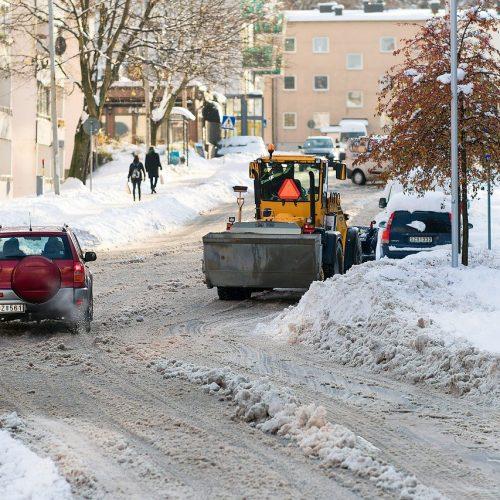 Бионордом хотят посыпать все улицы Новосибирска