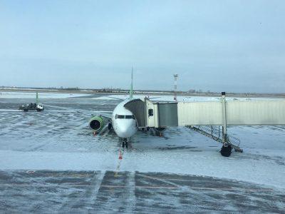 Авиакомпании увеличивают частоту рейсов для путешествий на новогодних каникулах