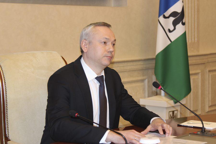 Андрей Травников сравнил президента и Навального со слоном и моськой