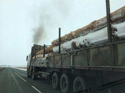 В Сибири объём экспорта «кругляка» сократился почти на четверть