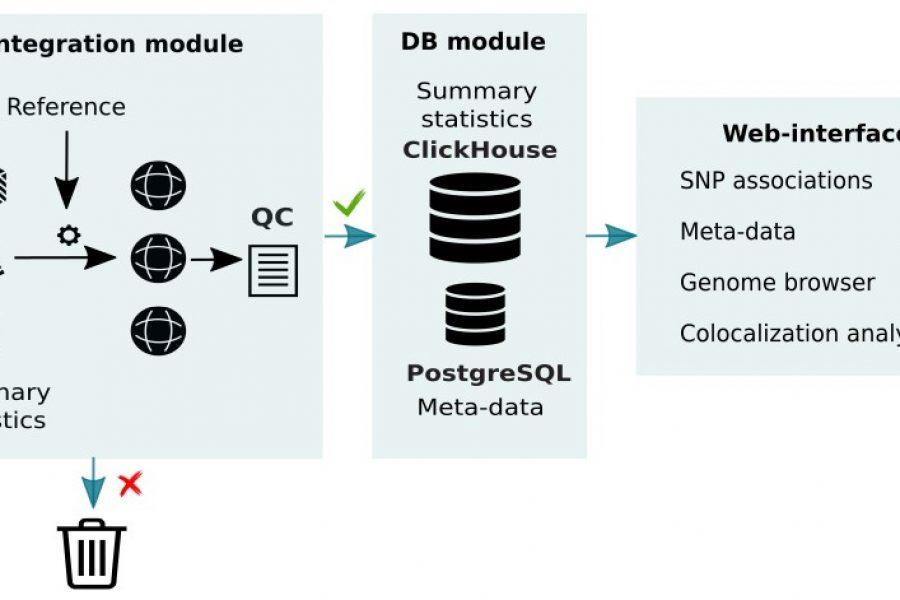 Ученые НГУ работают над базой данных генетических ассоциаций