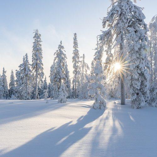 В Новосибирск идет очередное похолодание