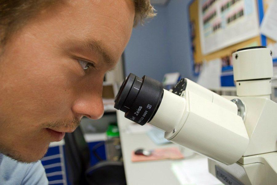 Рацион питания школьников будет оценивать новая лаборатория Роспотребнадзора