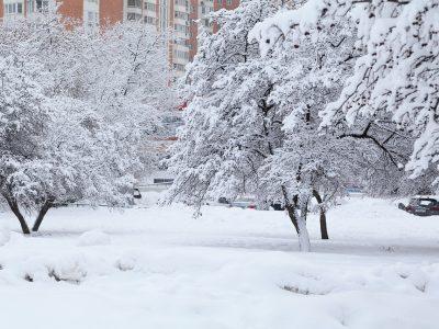 В Новосибирске ожидается резкое похолодание
