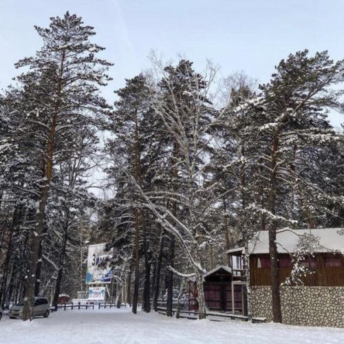 Заельцовский парк закроют с 15 апреля