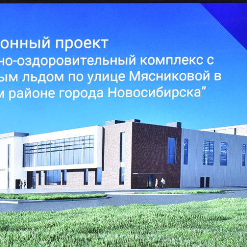 Ледовый дворец ГК «Стрижи» одобрили на инвестсовете