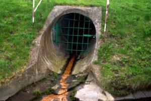 Ассенизаторы просят увеличить число мест для слива нечистот
